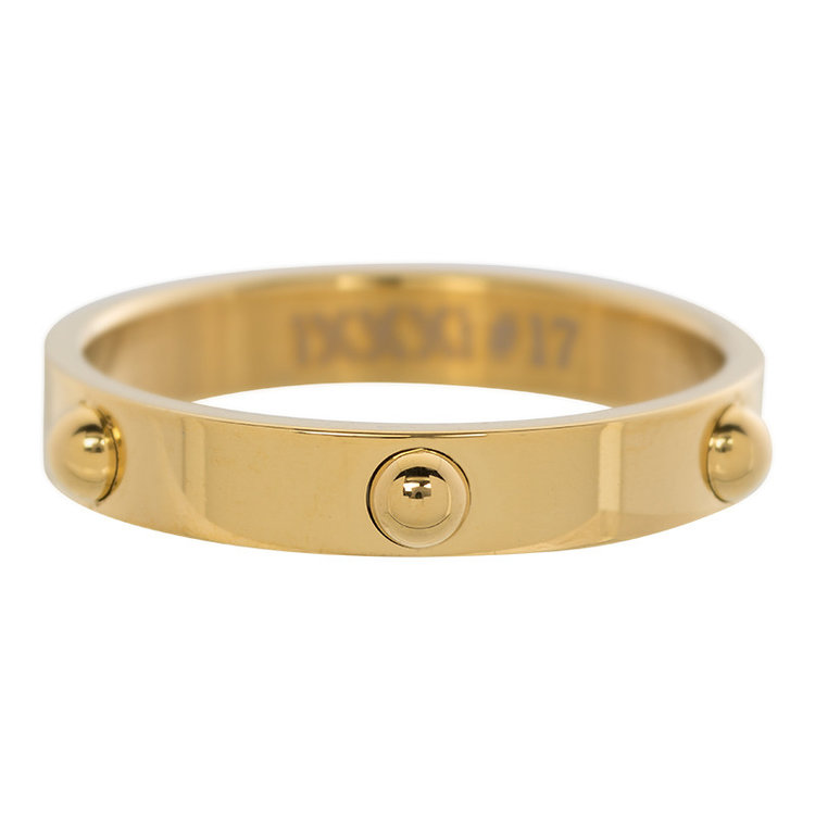 iXXXi Ring 4mm Edelstaal Dots Goud