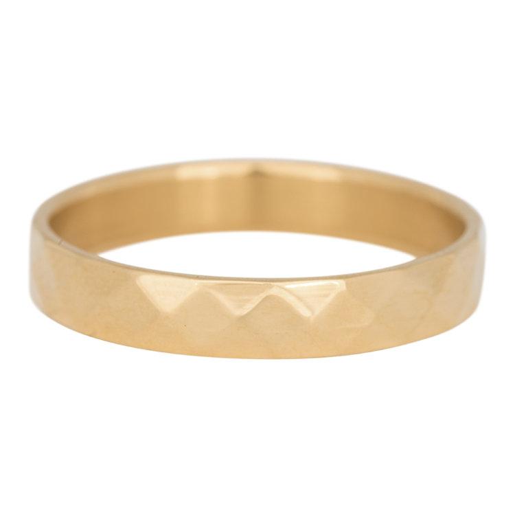iXXXi Ring 4mm Facet Edelstaal Goud