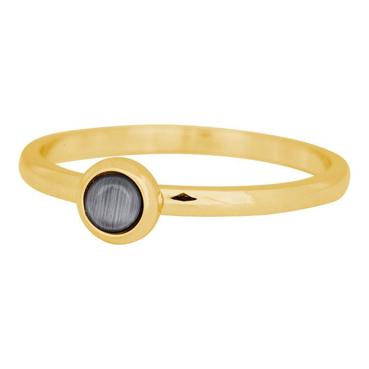 iXXXi Ring 2mm Edelstaal Goud Natuursteen Grijs