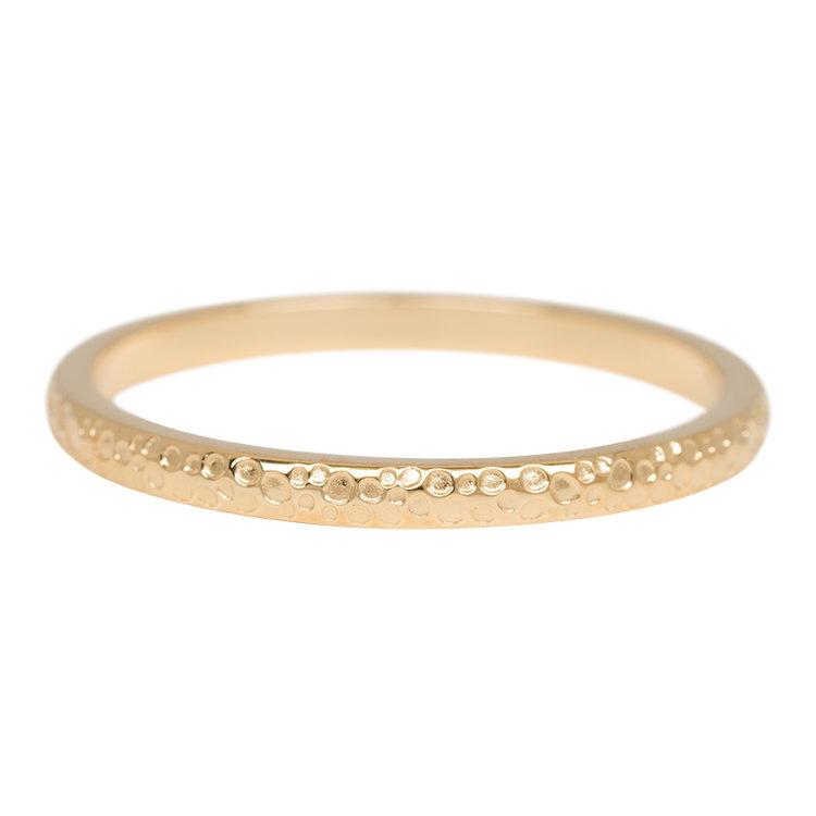 iXXXi Ring 2mm Edelstaal Dancer Goud