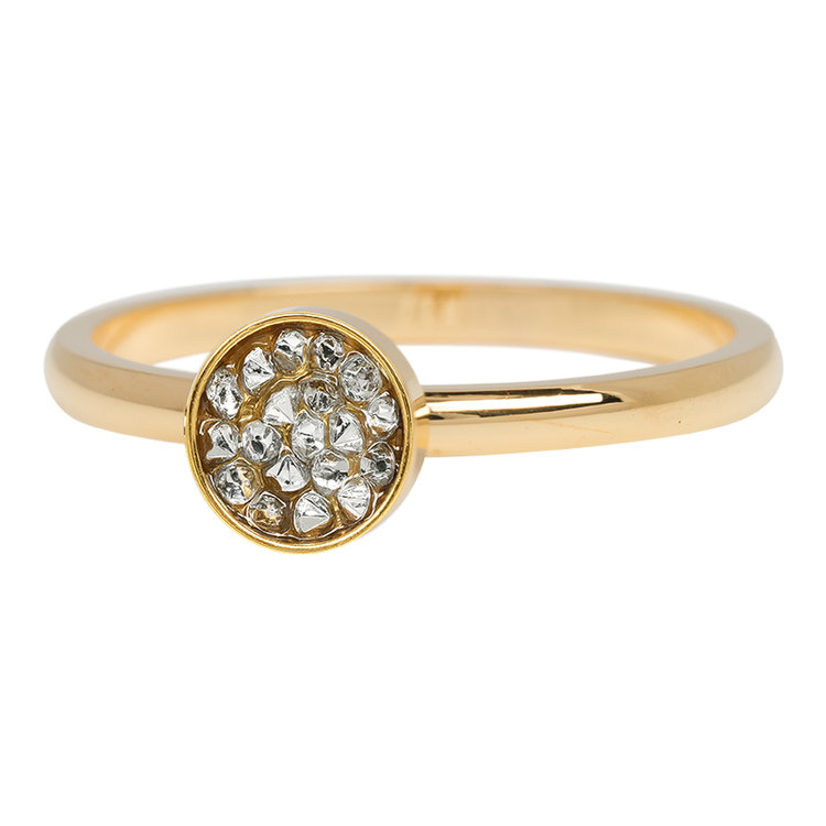 iXXXi Ring 2mm Edelstaal Cup Stones Goud
