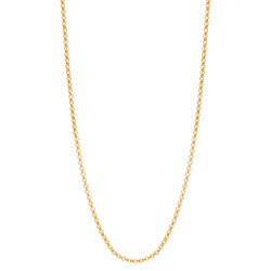 Alexander Jacobs Jewels Edelstaal Ketting Goudkleurig 60-66cm