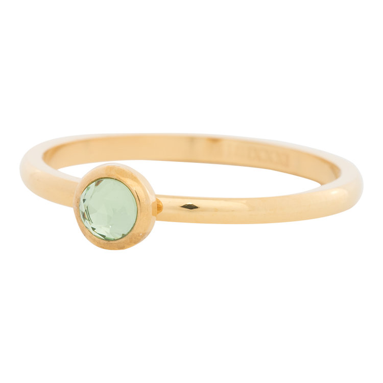 iXXXi Ring 2mm Edelstaal Goudkleurig Natuursteen Light Green
