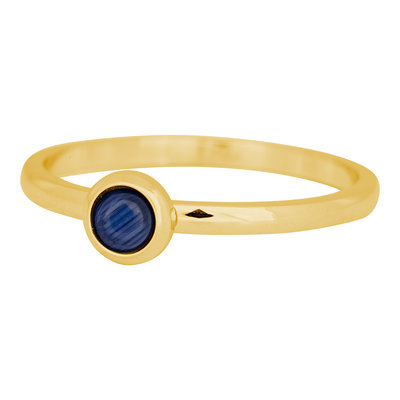 iXXXi Ring 2mm Edelstaal Goudkleurig Natuursteen Navy Blue