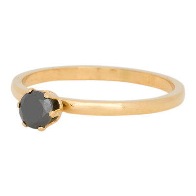 iXXXi Ring 2mm Edelstaal Crown Black Diamond Goud-kleurig