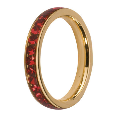 Melano Friends Side Ring Goudkleurig, Zirkonia Stones Light Siam