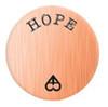 Alexander Jacobs Jewels Backplate Edelstaal Rose Goudkleurig Hope 25mm