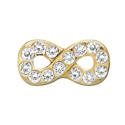 Alexander Jacobs Jewels Floating Charm Edelstaal Goudkleurig Infinity Zirkonia Crystal