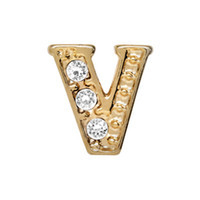 Alexander Jacobs Jewels Floating Charm Edelstaal  Goud V
