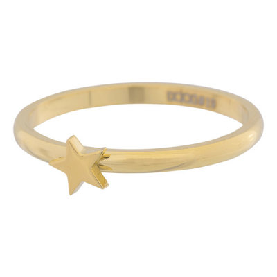 iXXXi Ring 2mm Edelstaal Goud Ster
