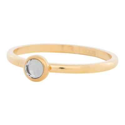 iXXXi Ring 2mm Edelstaal Goud Natuursteen White