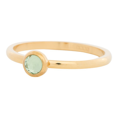 iXXXi Ring 2mm Edelstaal Goud Natuursteen Light Green