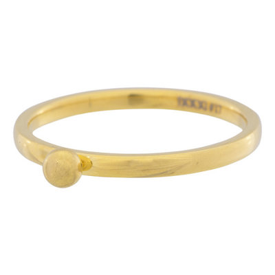 iXXXi Ring 2mm Edelstaal Goud 1 Bolletje
