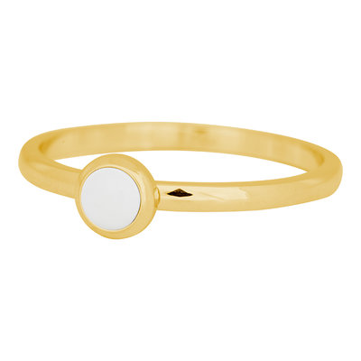 iXXXi Ring 2mm Edelstaal Goud Bright White