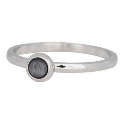 iXXXi Ring 2mm Edelstaal Zilverkleurig Natuursteen Grijs