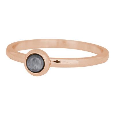 iXXXi Ring 2mm Edelstaal Rose Goudkleurig Natuursteen Grijs