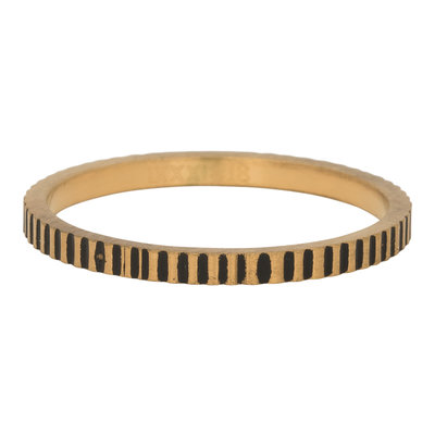 iXXXi Ring 2mm Edelstaal Cartels Goud-kleurig