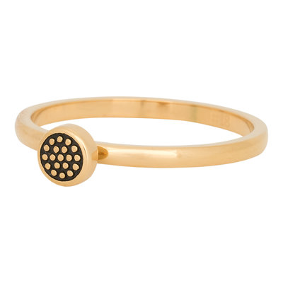 iXXXi Ring 2mm Edelstaal Pin Cushion Goud-kleurig
