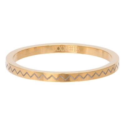 iXXXi Ring 2mm Edelstaal Heartbeat Goudkleurig