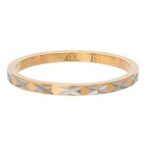 iXXXi Ring 2mm Edelstaal X Row Goudkleurig